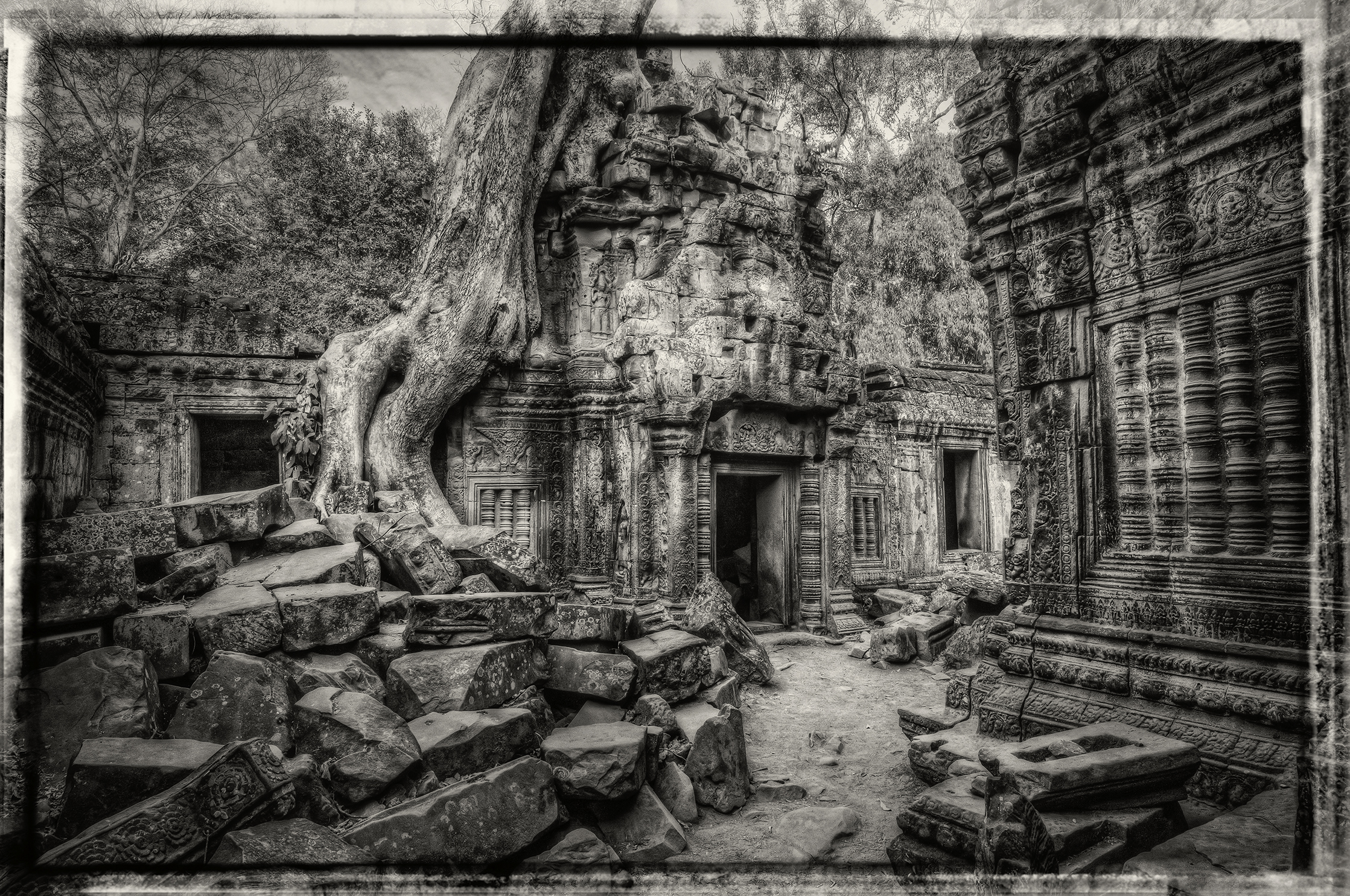 An entry into the Ta Prohm ruin in Cambodia