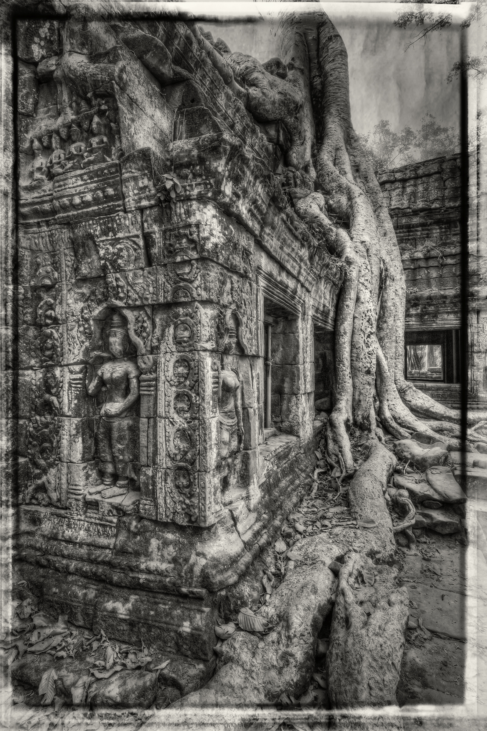 Inside the Ta Prohm Temple in Cambodia