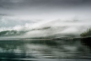 Foggy shoreline in the Broughtons.jpg