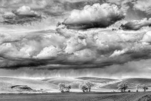 Rain over Cottonwoods.jpg