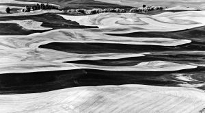 c33-Steptoe Butte, Washington Wheatcountry.jpg