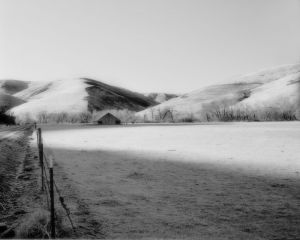 c46-Palouse Frosty Field.jpg