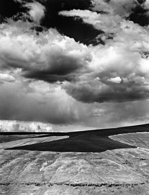 c63-Spring Rain Over Winter Wheat, Garfield County, Washington.jpg