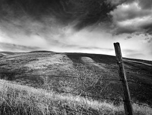 c95-Penawawa Canyon Road, Washington Wheatcountry.jpg