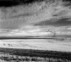 c97-windmills in wheatfield.jpg