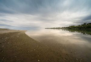 Lost in the Inner Harbor, Dungeness Spit