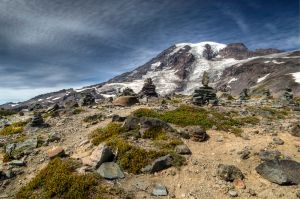 Panorama Point, Mount Rainier