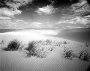 Early Morning Stillness, Eel Creek Dunes, Oregon