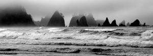 Shi Shi Beach, Olympic National Park