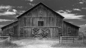 resized old barn-c60.jpg