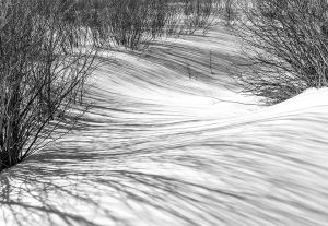 Shadows on the snowfield